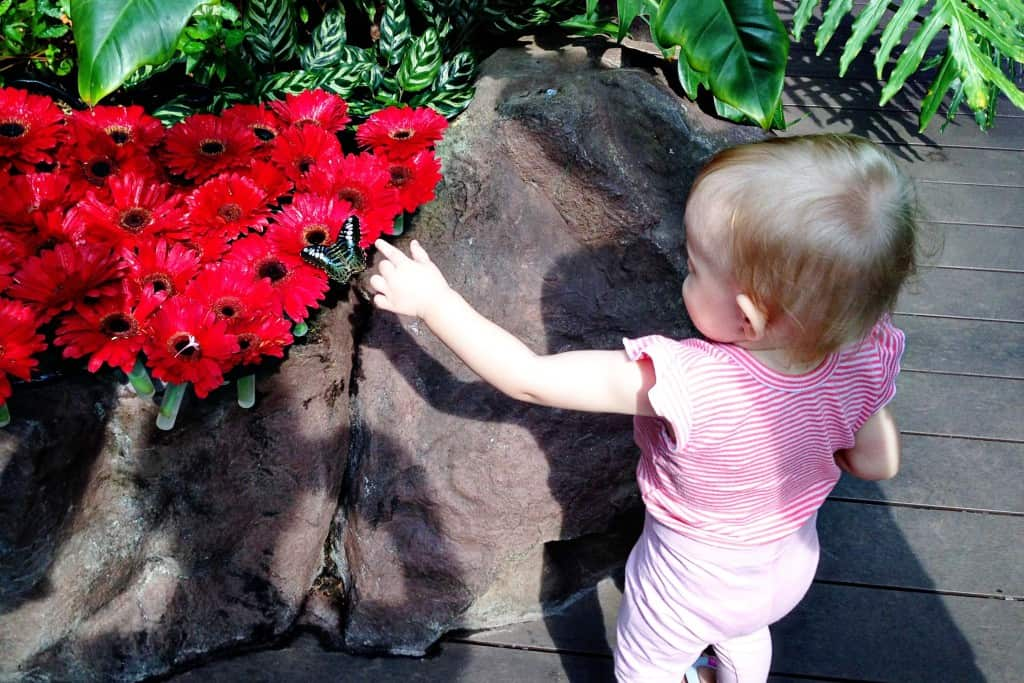 Things to do at Changi Airport with Kids