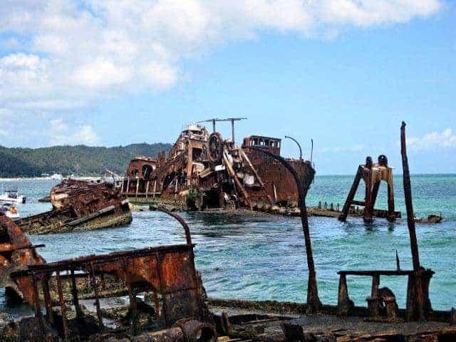 Tangalooma Wrecks dolphin cruise