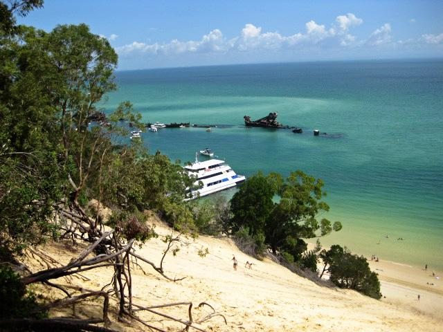 Tangalooma day trip and dolphin cruise