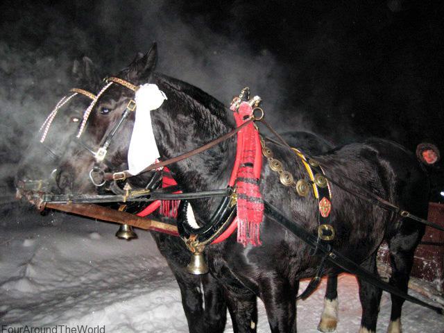 Night sleigh ride in Zakopane