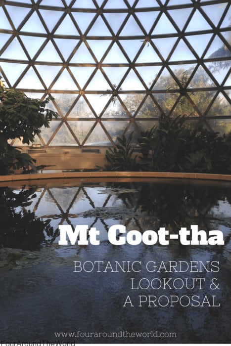 Mt Coot-tha Botanic gardens, lookout & our chaotic proposal story