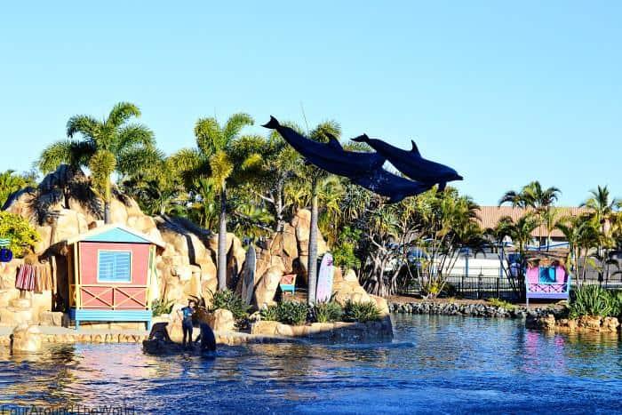 Seaworld Gold Coast resort and theme park