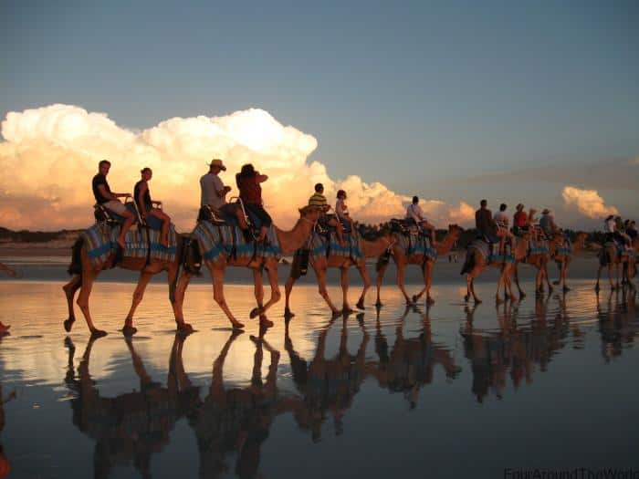 Camel Rides Broome - Best Of The Kimberley