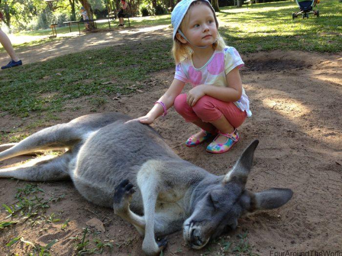 Australia Zoo visit