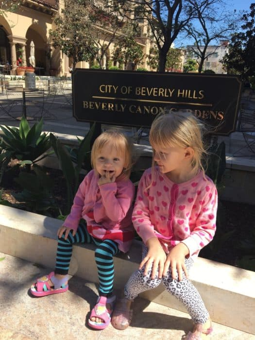 A Day in LA Tours review: Beverly Hills