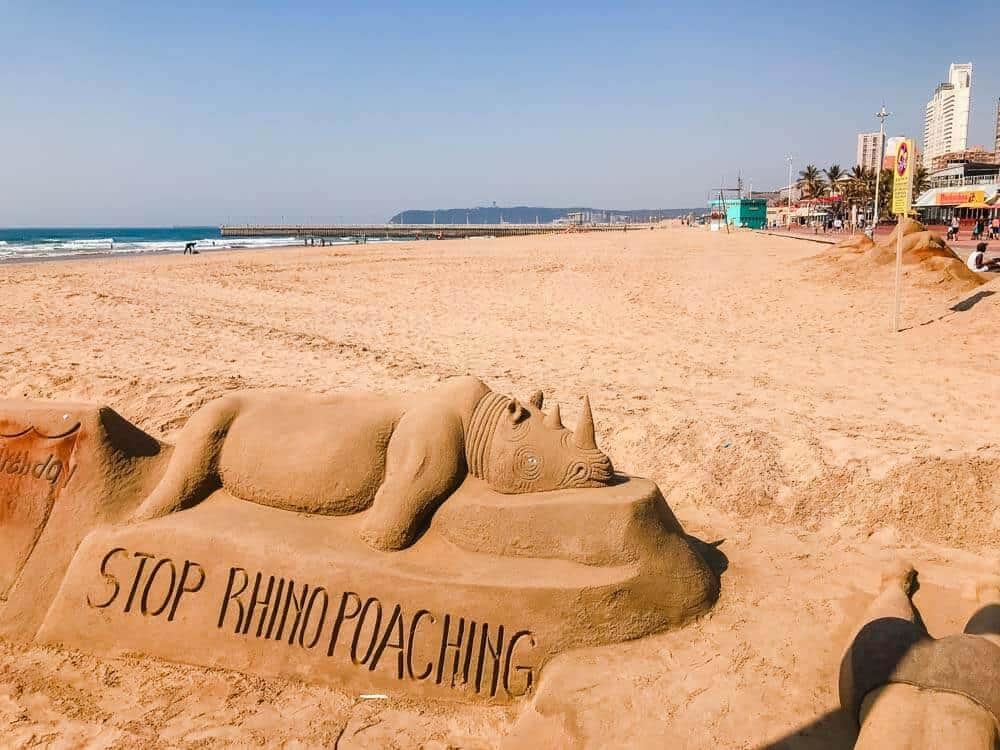 Rhino beach