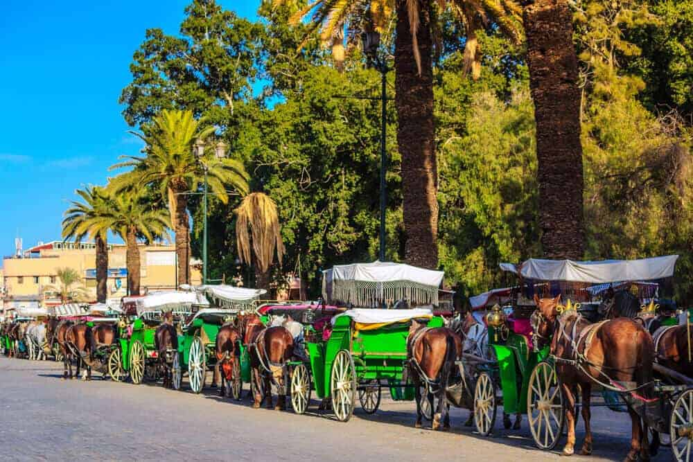 Horse-drawn cart in Marrakesh