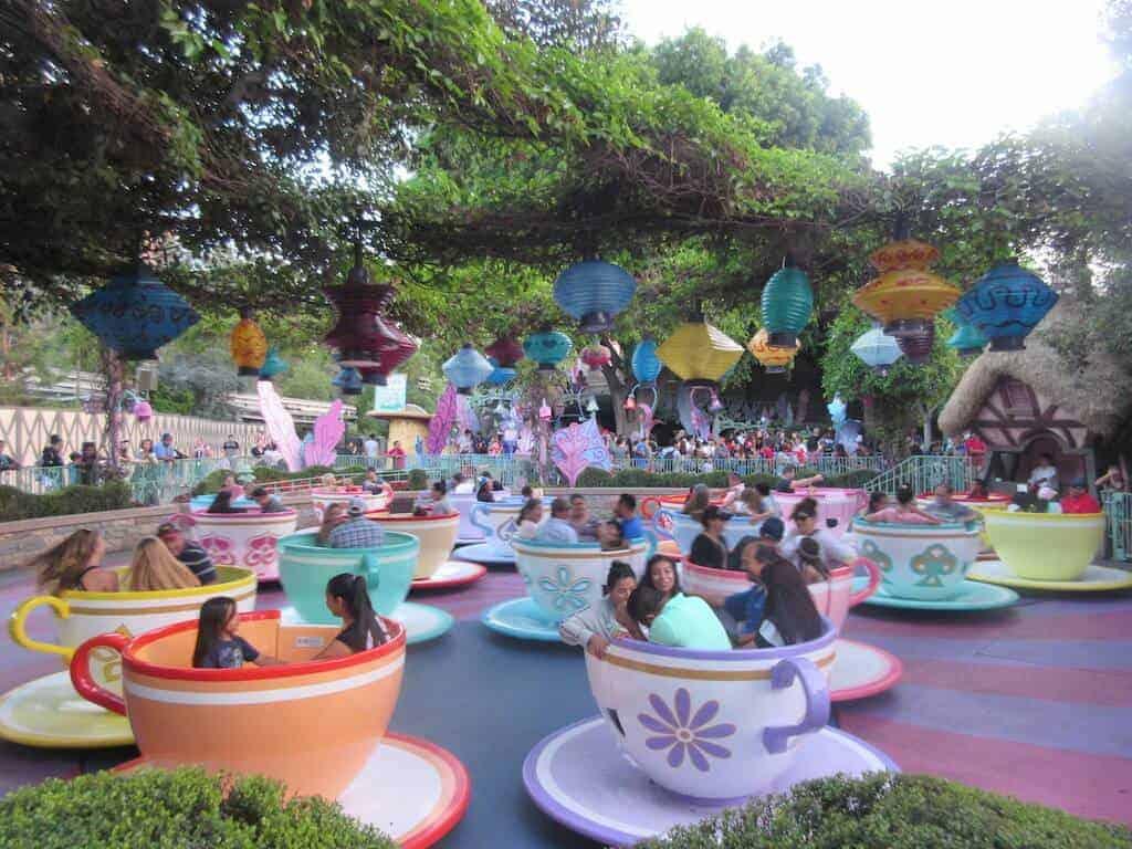 Riding the Disneyland teacups