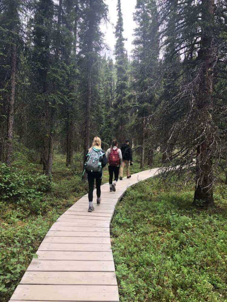 hiking in seward alaska