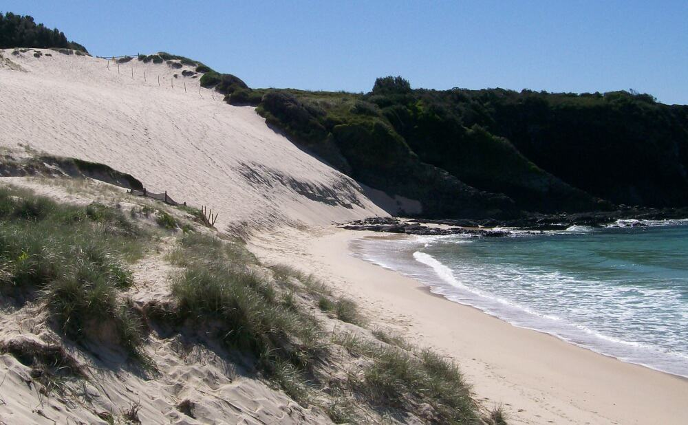 One Mile sand dune Forster