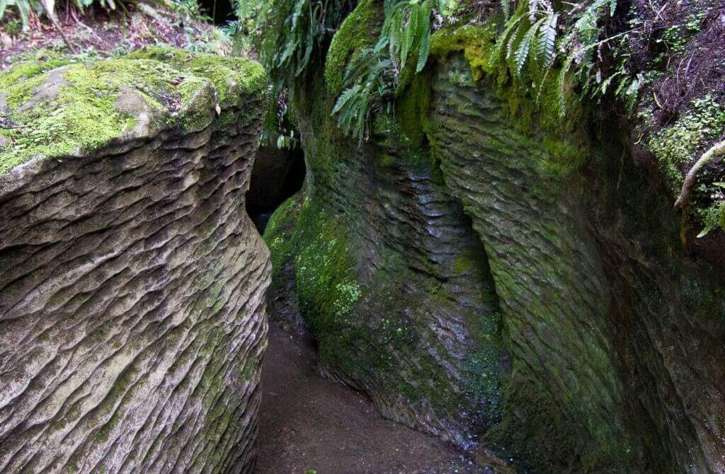 Te Anau glow worm caves tour entrance