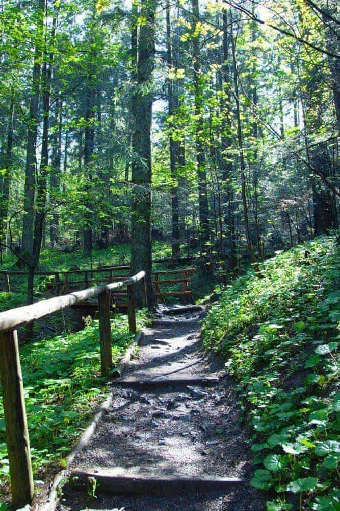 Hiking track in Zakopane