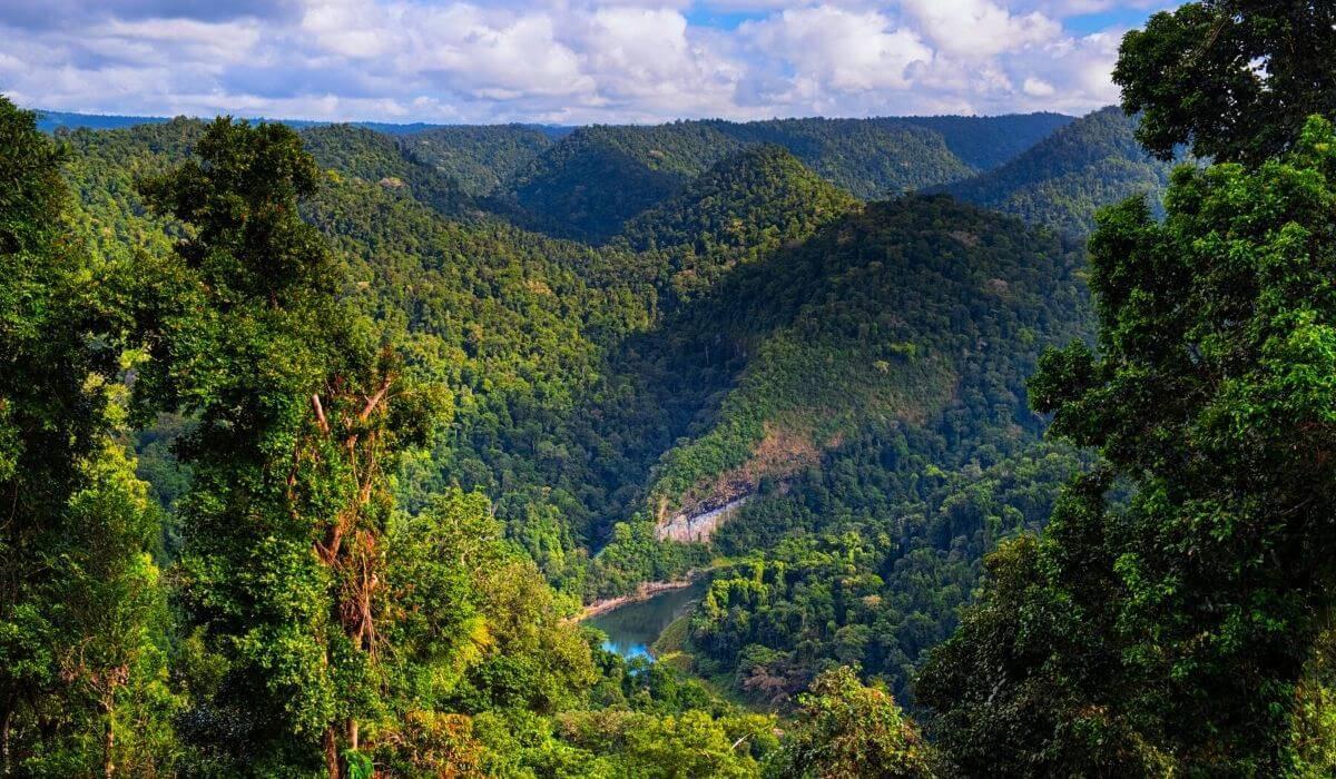 atherton tablelands mountains day trip
