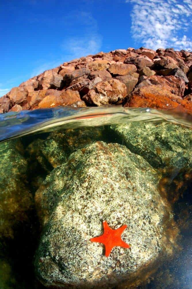 whyalla rock pools