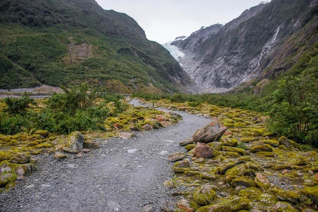 franz josef glacier track new zealand south island walks