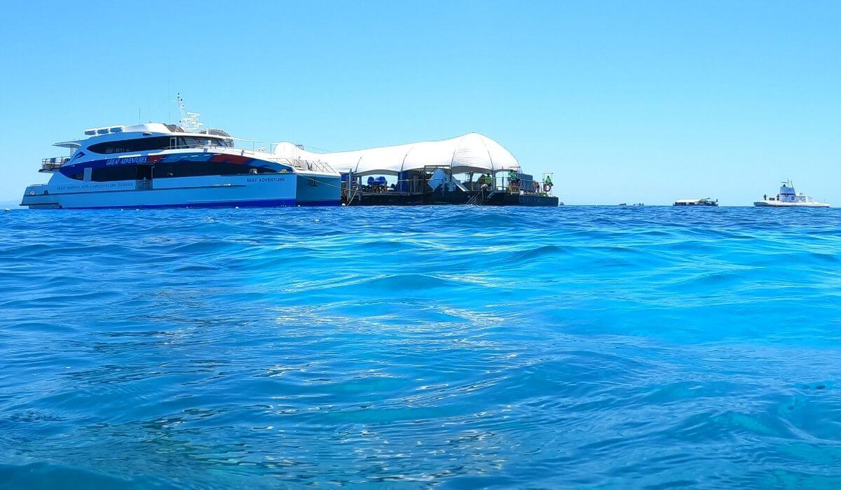 great barrier reef snorkeling tour pontoon