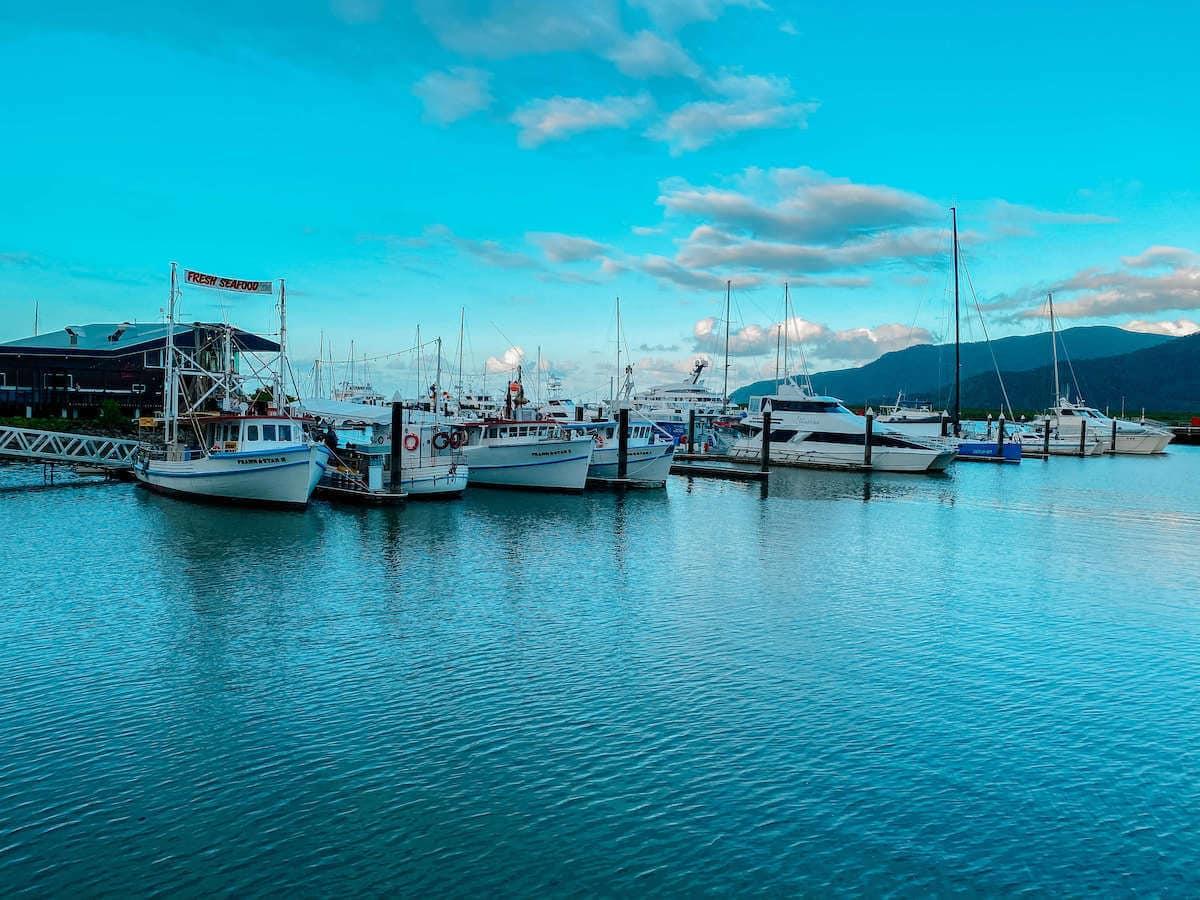1 week Cairns itinerary - marlin marina