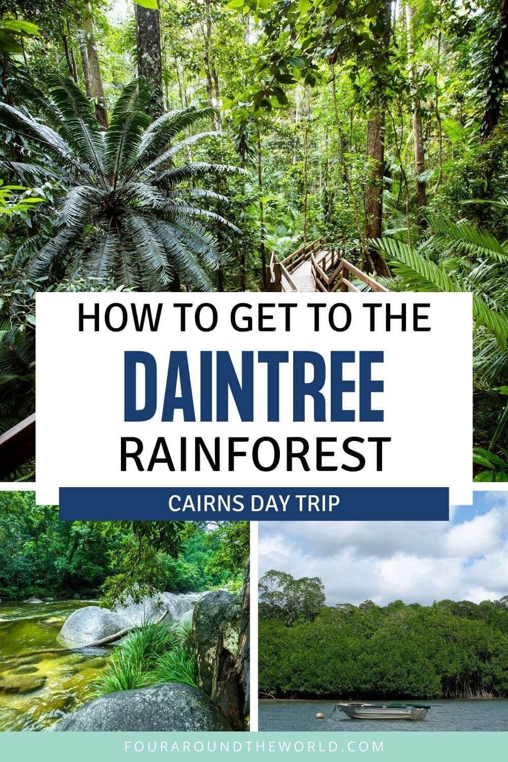 How to get from Cairns to Daintree Rainforest Day Trip