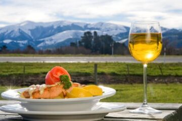 wine glass and meal at new zealand winery tour