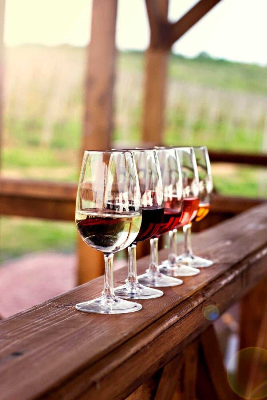 new zealand wine tasting tour