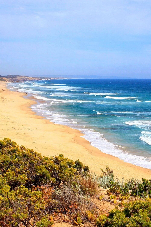 portsea beach